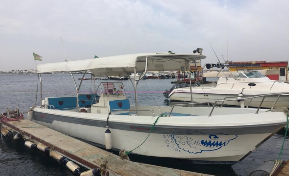 قارب نوار القرشي