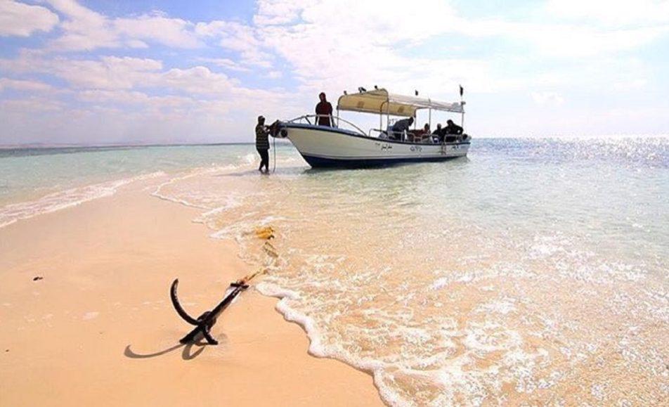 قارب عطر الندى