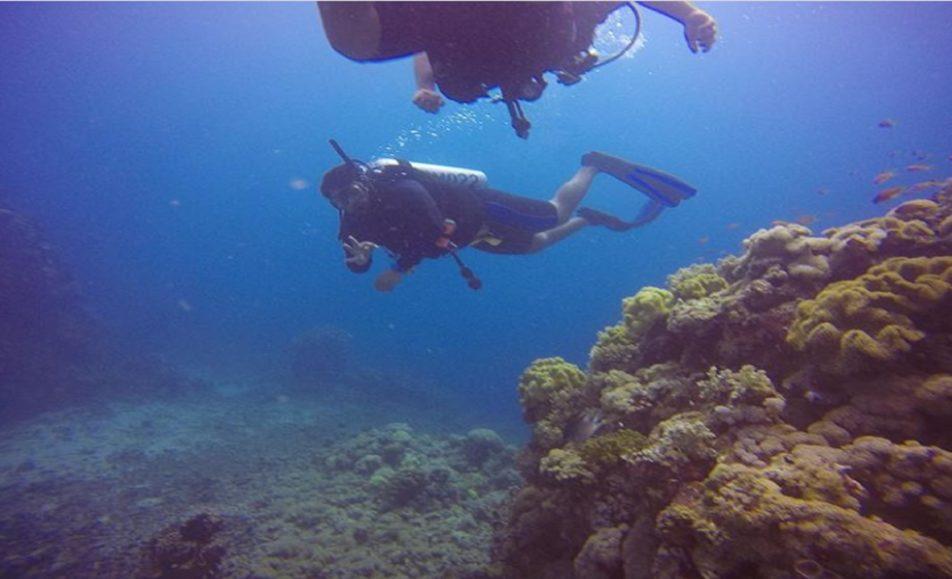 كابتن يحيى كبيسي لرحلات الغوص التدريب (PADI)
