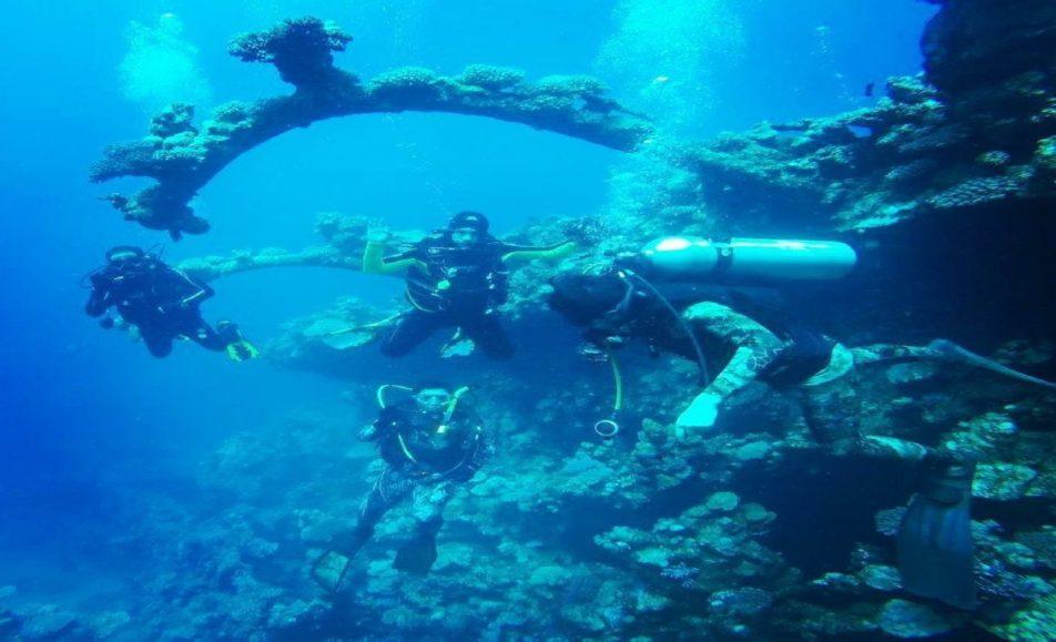 كابتن عبده الديب لرحلات الغوص والتدريب (PADI)