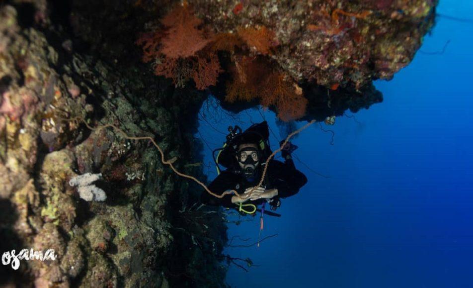 كابتن أسامة ابوالسنون لرحلات الغوص والتدريب (SSI)