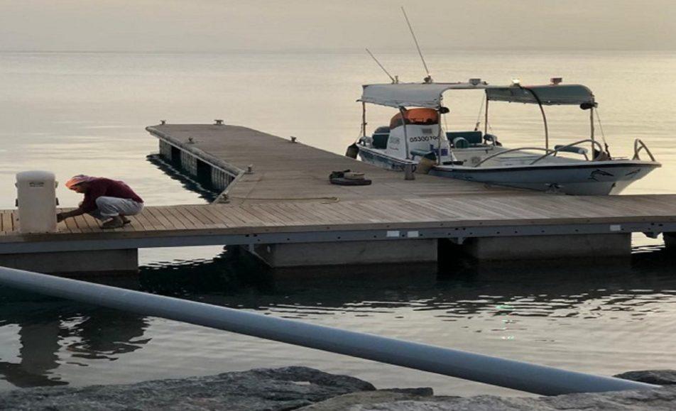 قارب بيلسان