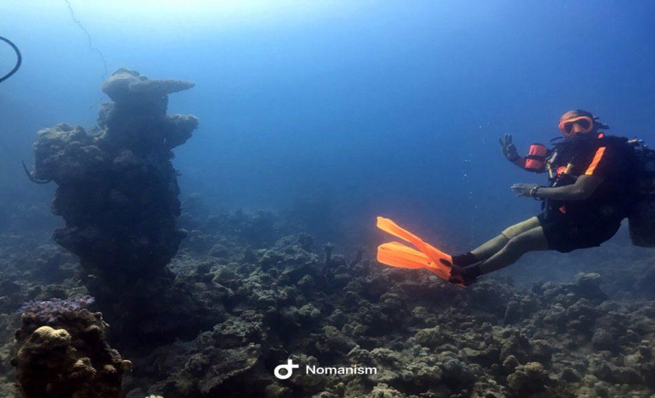 سالم النعماني لرحلات الغوص والتدريب (PADI)