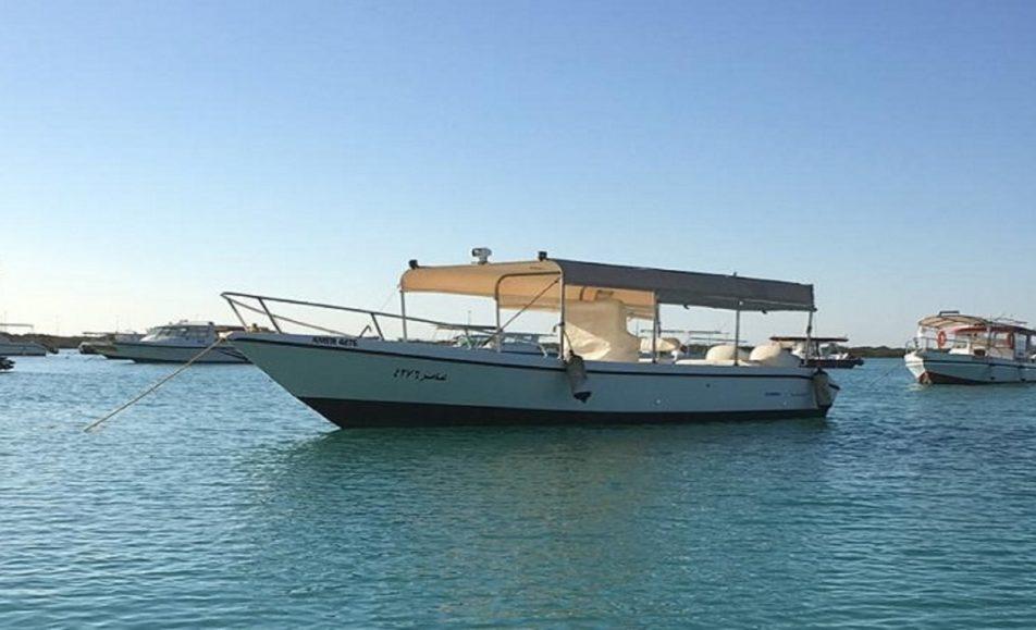 قارب عامر