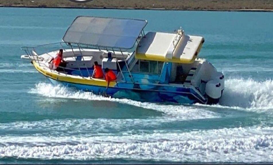 قارب النواف