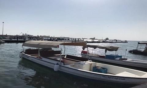 قارب تمساح المياه المالحة