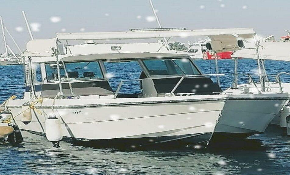 قارب أنس القرشي